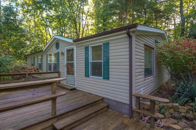 176 Rowan Lane, Unicoi, TN 37692 (MLS #9929785) :: Conservus Real Estate Group