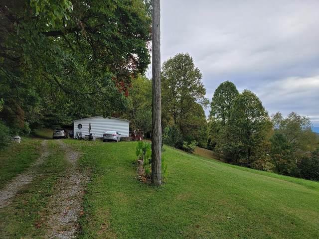 228 Barger Hollow Road, Blountville, TN 37617 (MLS #9929808) :: Bridge Pointe Real Estate