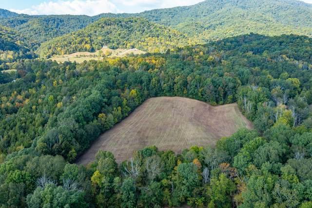 0 Kelly Hollow Lane, Greeneville, TN 37745 (MLS #9929861) :: Conservus Real Estate Group