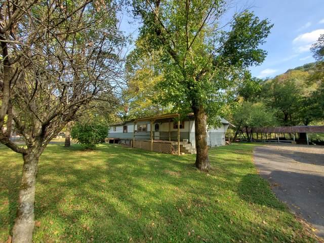 17066 North Fork River Road, Abingdon, VA 24210 (MLS #9929869) :: Red Door Agency, LLC