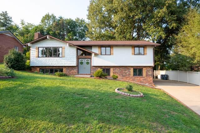 2012 Louita Avenue, Kingsport, TN 37660 (MLS #9929881) :: Red Door Agency, LLC