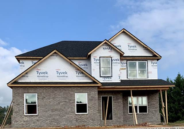 248 Hillendale Lane, Gray, TN 37615 (MLS #9929919) :: Red Door Agency, LLC