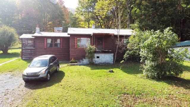 111 Hughes Hollow Road Road, Roan Mountain, TN 37687 (MLS #9929920) :: Conservus Real Estate Group