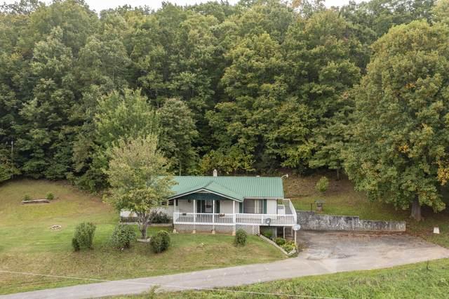 102 Heaton Ridge Road, Roan Mountain, TN 37687 (MLS #9929976) :: Tim Stout Group Tri-Cities