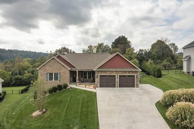 1238 Savin Falls, Gray, TN 37615 (MLS #9929979) :: Red Door Agency, LLC