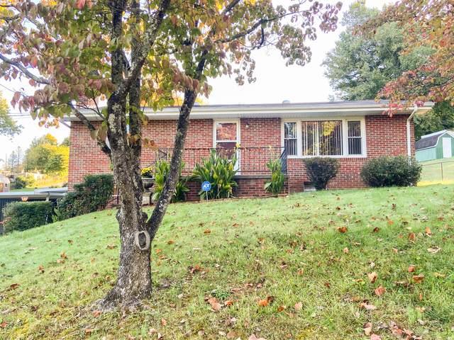 224 Brandonwood Drive, Johnson City, TN 37604 (MLS #9930030) :: Red Door Agency, LLC