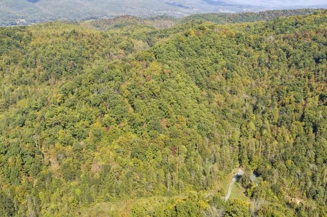 000 Blue Springs Road, Elizabethton, TN 37643 (MLS #9930037) :: Red Door Agency, LLC