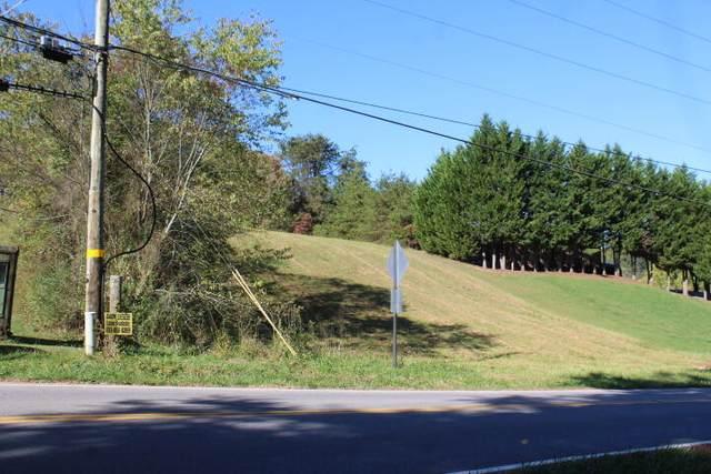 Tbd Hammond Ave Avenue, Mount Carmel, TN 37645 (MLS #9930094) :: Conservus Real Estate Group