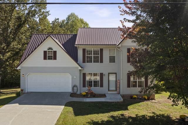 1077 Le Amron Drive, Kingsport, TN 37665 (MLS #9930096) :: Red Door Agency, LLC