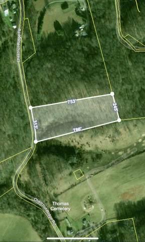 29188 Chestnut Ridge, Meadowview, VA 24361 (MLS #9930198) :: Highlands Realty, Inc.