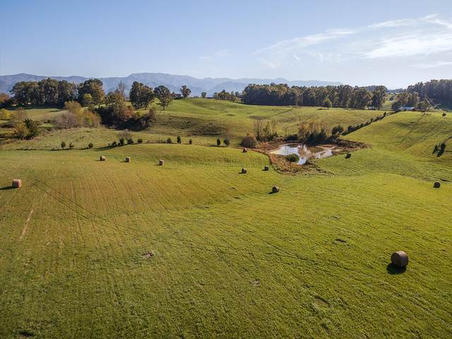 Tbd Mae Mckee Rd., Chuckey, TN 37641 (MLS #9930216) :: Highlands Realty, Inc.