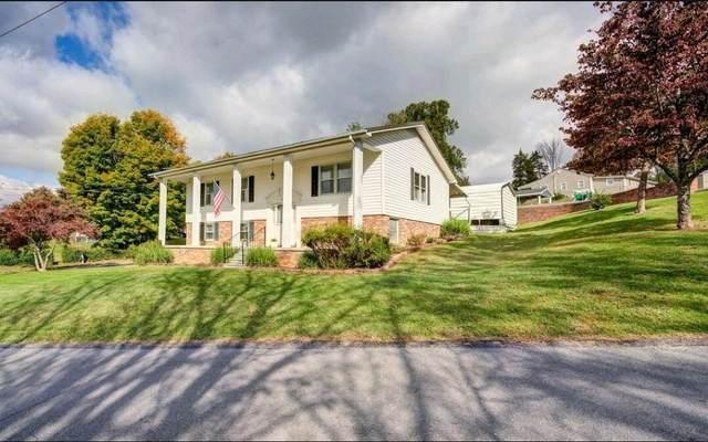 201 Old Siam Road, Elizabethton, TN 37643 (MLS #9930274) :: Conservus Real Estate Group