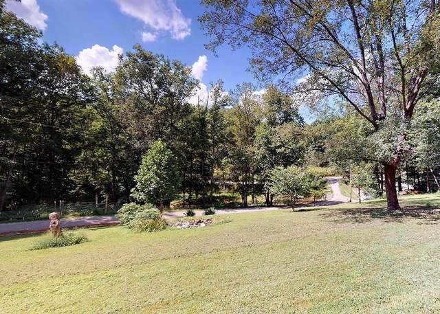 779 Poplar Springs Road, Greeneville, TN 37743 (MLS #9930279) :: Tim Stout Group Tri-Cities
