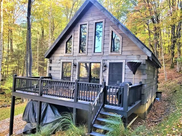 174 Roan Ladder Road, Roan Mountain, TN 37687 (MLS #9930291) :: Bridge Pointe Real Estate