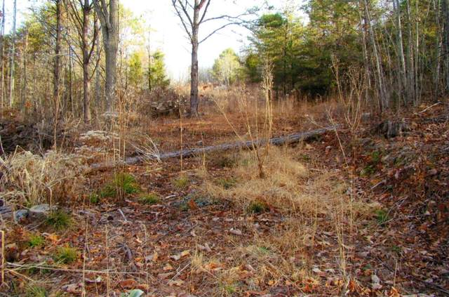 00 Hill Station Alley Road, Gate City, VA 24251 (MLS #9930346) :: Tim Stout Group Tri-Cities