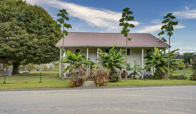 275 Fortions Drive, Limestone, TN 37681 (MLS #9930371) :: Tim Stout Group Tri-Cities