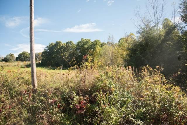 Lot 33 Whitehouse Road, Greeneville, TN 37745 (MLS #9930406) :: Bridge Pointe Real Estate