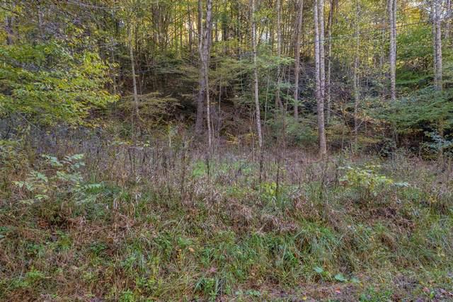 985 Copperhead Hollow Road, Mountain City, TN 37683 (MLS #9930421) :: Bridge Pointe Real Estate