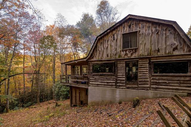 2425 Mining Town Road, Mountain City, TN 37683 (MLS #9930427) :: Bridge Pointe Real Estate