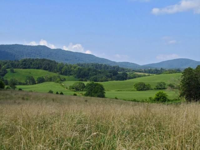 254 County Line Road, Dandridge, TN 37725 (MLS #353207) :: Conservus Real Estate Group