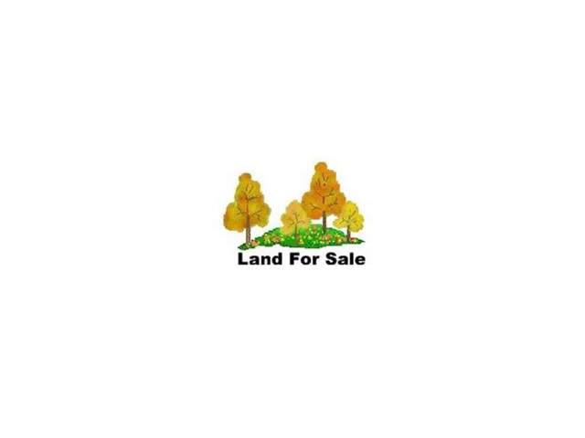 Lot #13 Fox Ridge Drive, Mount Carmel, TN 37645 (MLS #353272) :: Conservus Real Estate Group