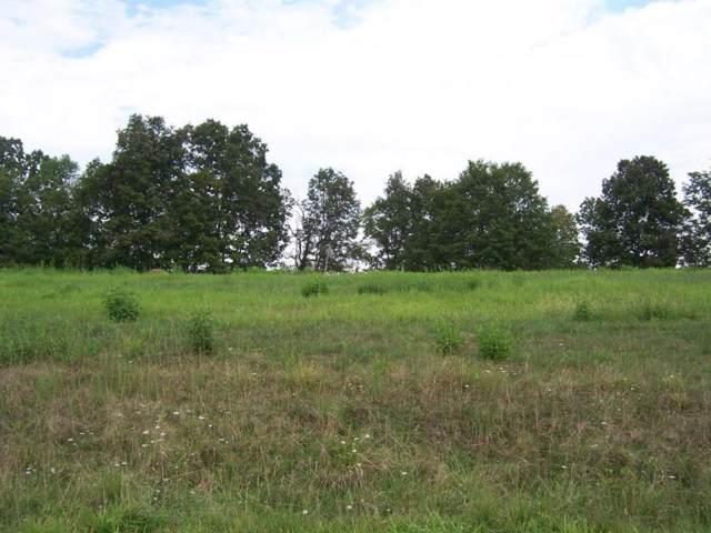 0 Lake Bend Court, Abingdon, VA 24211 (MLS #366844) :: Highlands Realty, Inc.