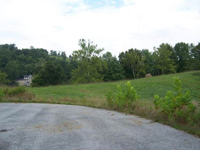 0 Lake Bend Court, Abingdon, VA 24211 (MLS #366850) :: Highlands Realty, Inc.