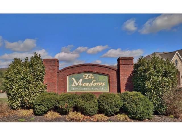229 Lakefront Lane, Bluff City, TN 37618 (MLS #374152) :: Bridge Pointe Real Estate