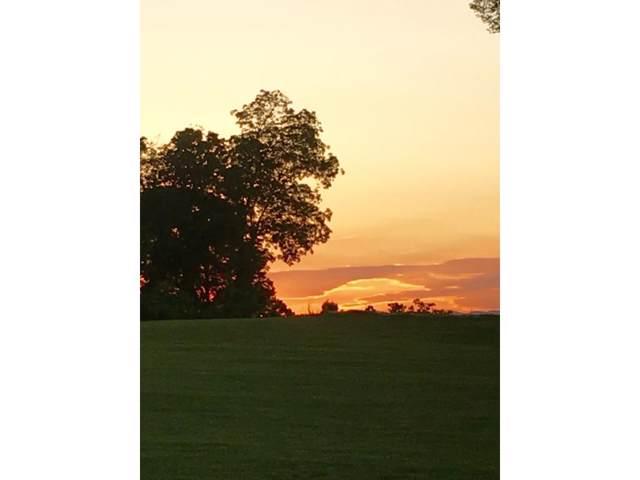 1059 Hawk Nest Court, Jonesborough, TN 37659 (MLS #378213) :: Red Door Agency, LLC