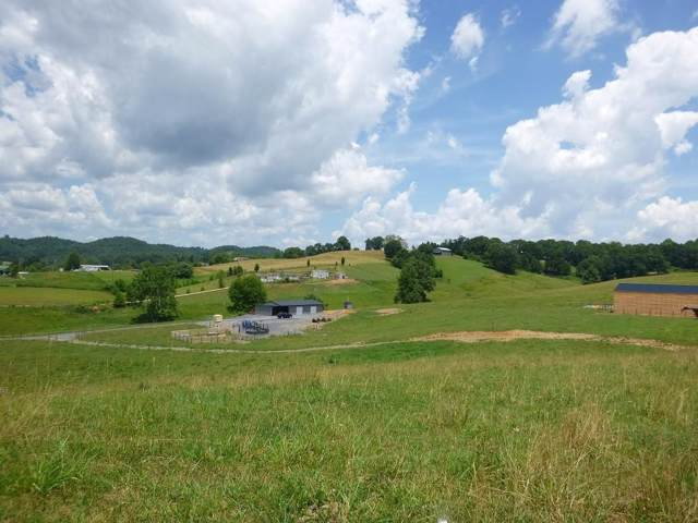 971 Old Union Road, Church Hill, TN 37642 (MLS #381245) :: Conservus Real Estate Group