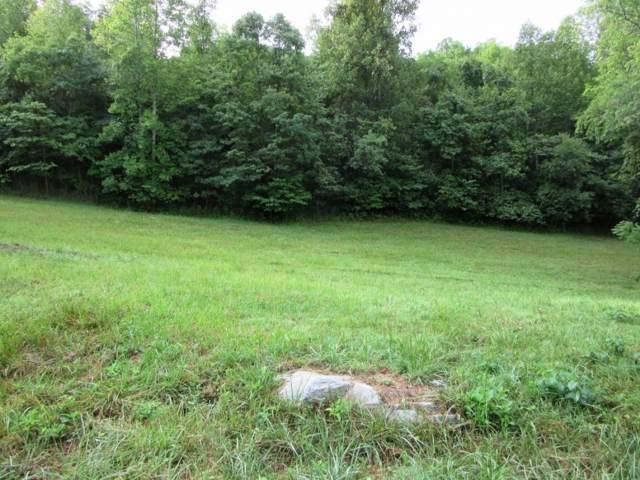 TBD Greenbriar Circle, Elizabethton, TN 37643 (MLS #381711) :: Bridge Pointe Real Estate