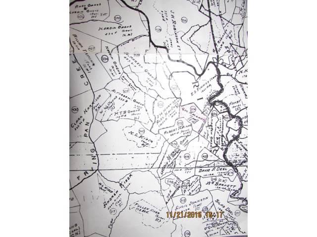 Tbd Ferrels Branch, Haysi, VA 24228 (MLS #385205) :: Red Door Agency, LLC