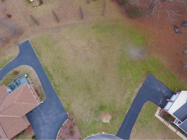 TBD Choates Ford Cove Road, Bluff City, TN 37618 (MLS #386614) :: Conservus Real Estate Group