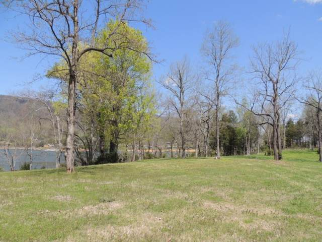 244 Walnut Bend Drive, Whitesburg, TN 37891 (MLS #390226) :: Highlands Realty, Inc.