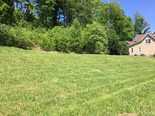 2354 Edinburgh Channel Road, Kingsport, TN 37664 (MLS #391106) :: Highlands Realty, Inc.