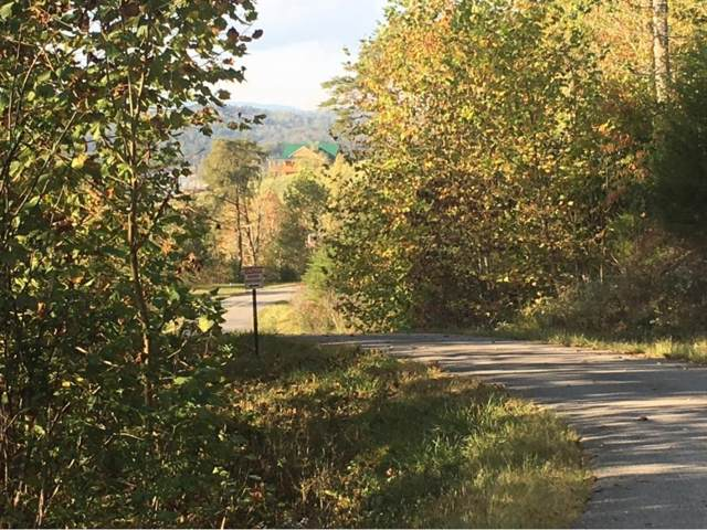 Lot 776 Russell Brothers Road, Sharps Chapel, TN 37866 (MLS #398869) :: Conservus Real Estate Group