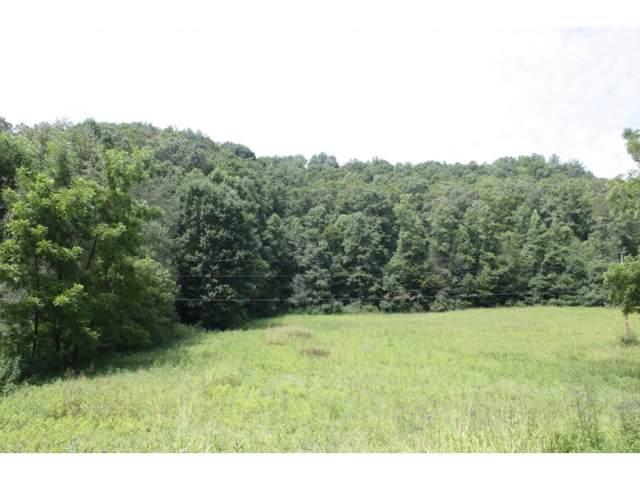 TBD Hunters East Valley, Dungannon, VA 24245 (MLS #402891) :: Highlands Realty, Inc.