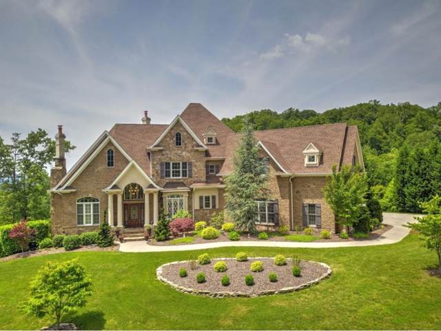 1015 Treetop Private Drive, Kingsport, TN 37664 (MLS #404328) :: Conservus Real Estate Group