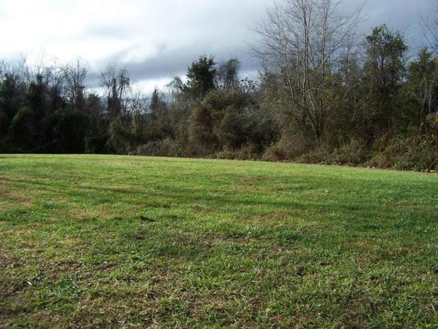 TBD Holston View Drive, Rogersville, TN 37857 (MLS #404978) :: Conservus Real Estate Group