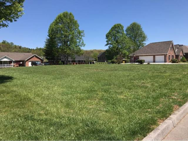 TBD Halifax Drive, Kingsport, TN 37660 (MLS #405881) :: Conservus Real Estate Group