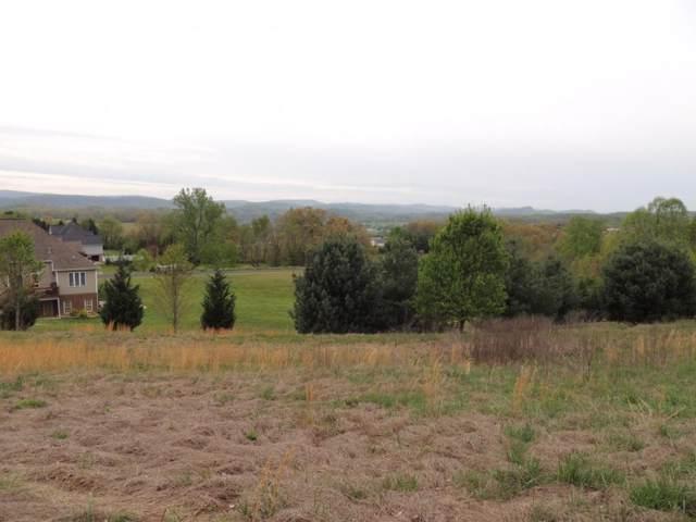 261 Roanoke Drive, Surgoinsville, TN 37873 (MLS #406074) :: Bridge Pointe Real Estate