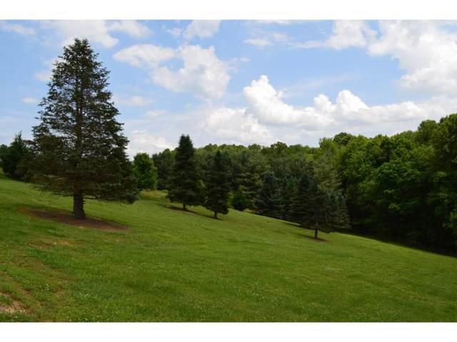 Lot#4 Country Acres Drive, Elizabethton, TN 37643 (MLS #407324) :: Conservus Real Estate Group