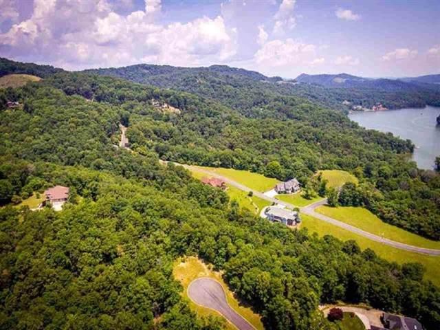 8028 Mountain Ridge Drive, Mooresburg, TN 37811 (MLS #408240) :: The Lusk Team