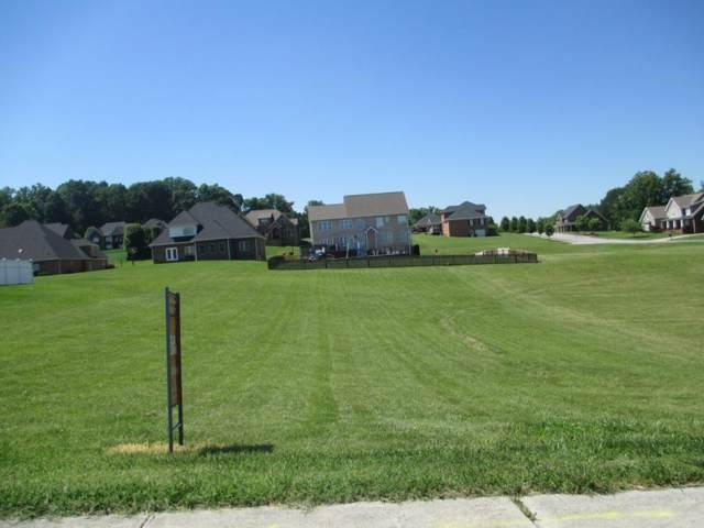 117 Sugarcane Lane, Blountville, TN 37617 (MLS #408789) :: Highlands Realty, Inc.