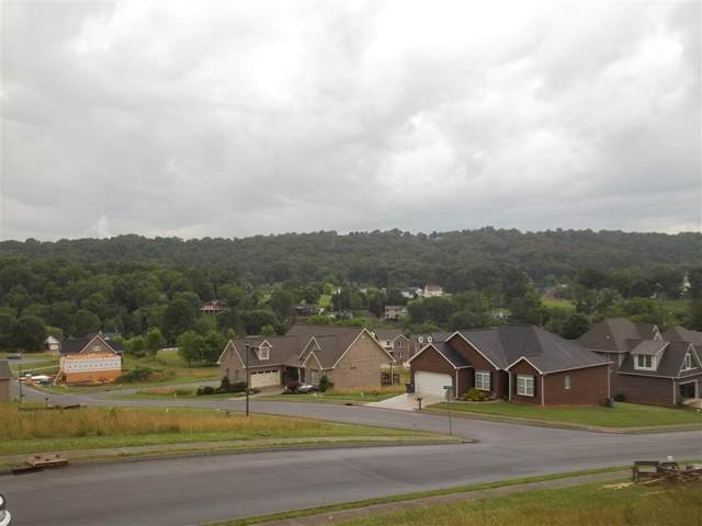 4018 Sail Makers Whip Court, Kingsport, TN 37664 (MLS #408850) :: The Lusk Team