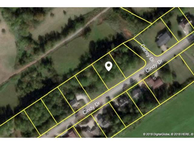 Lot 9 Cindy Drive, Greeneville, TN 37743 (MLS #412211) :: Tim Stout Group Tri-Cities