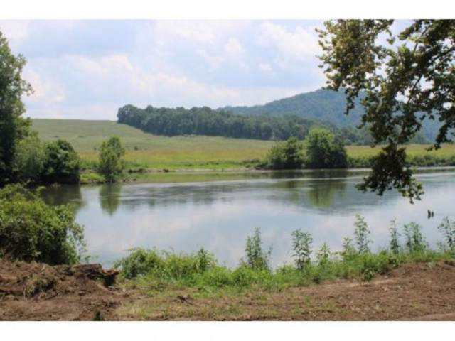 00 Old Stage Road, Rogersville, TN 37857 (MLS #412396) :: Bridge Pointe Real Estate