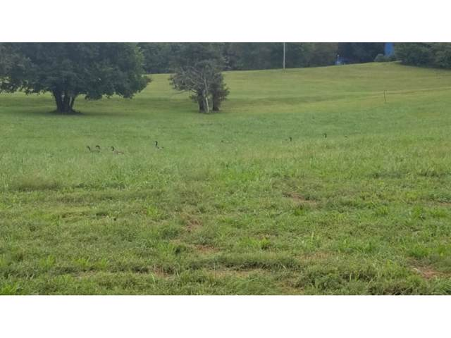 Lot #3 Paydens Way, Unicoi, TN 37692 (MLS #412643) :: The Lusk Team