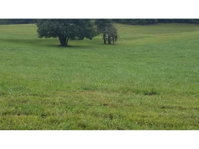 Lot #4 Paydens Way, Unicoi, TN 37692 (MLS #412644) :: The Lusk Team