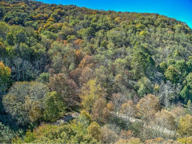 308 White Thorn, Roan Mountain, TN 37687 (MLS #414292) :: Highlands Realty, Inc.